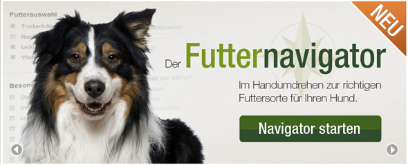 hundefutter-kaufen-2